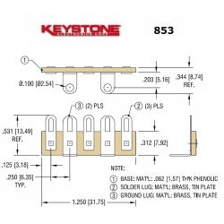 Keystone 853